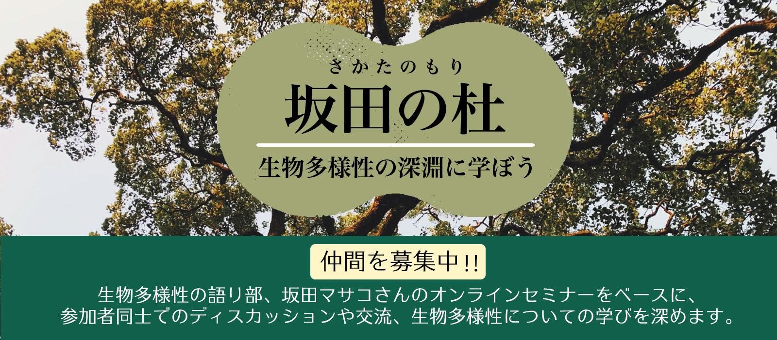 sakatanomori_banner
